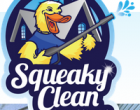 0 long island cleaning solutions