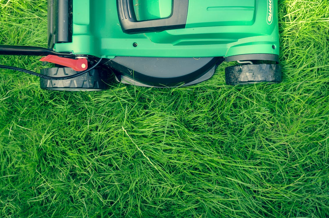 8 things that lead to lawn damage