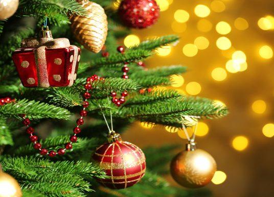 Fresh Christmas Tree Care Tips